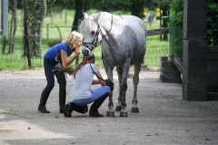 Bunde-richting-Brommelen-057-Meiden-verzorgen-hun-paard