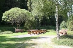 Harz-Altenbrak-055-Picknickplaats-bij-parkeerplaats-Bodewiese