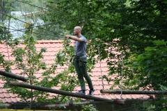 Thale-077-Klim-en-klauterpark