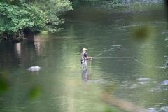 Wandeling-Altenbrak-Treseburg-041-De-visser-in-de-Bode