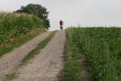 Eyserheide-Mountainbiker-begint-aan-afdaling